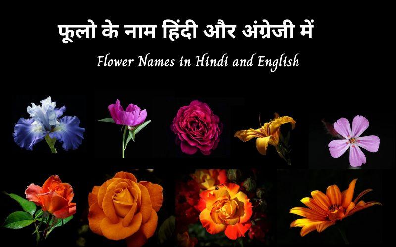 फूलो के नाम
